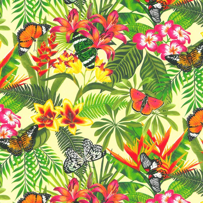 Coated inpakpapier - Vlinder dessin