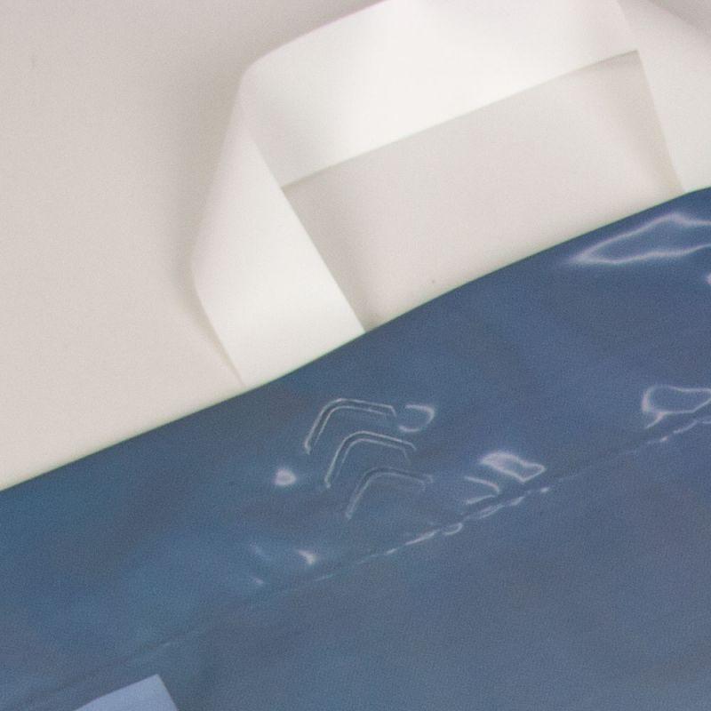 Plastictassenmetlus-plasticbagswithloophandles-Studystore-detail