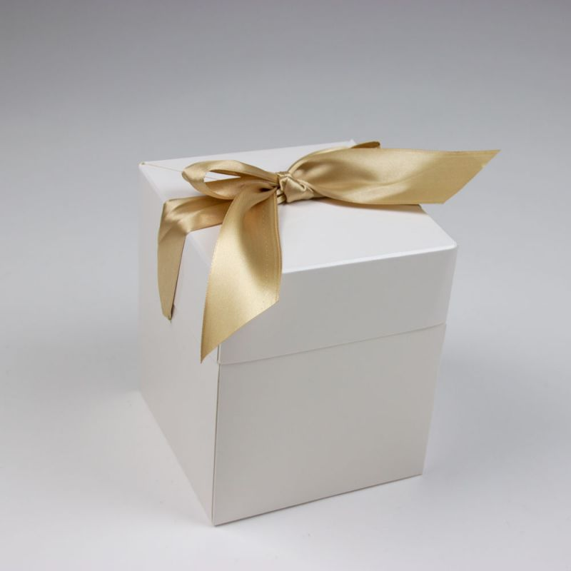 popupboxen-popupboxes-ProwinNomis-dicht-2